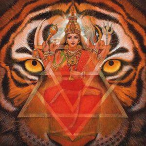 Shakti is - Durga riding her tiger